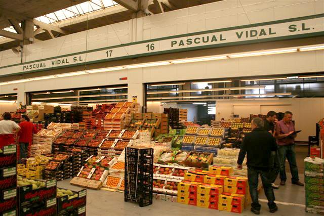 pascual-vidal-01